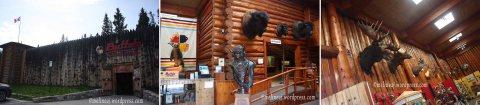 24 Buffalo Museum